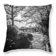 Msu Spring 14 Throw Pillow