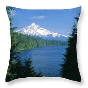 Mt. Hood National Forest Throw Pillow