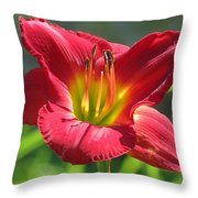 Scarlet Bloom Throw Pillow