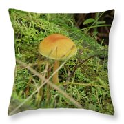 Mushroom And Moss Throw Pillow