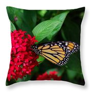 Musing Monarch Throw Pillow