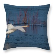 Mute Swan In Flight Throw Pillow