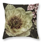 Muted Tones Throw Pillow