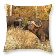 My Friends And I Throw Pillow