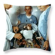 Nasa Chimpanzee, 1961 Throw Pillow
