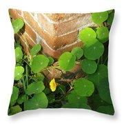 Nasturtium Leaves Throw Pillow
