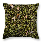 Nature Detail Throw Pillow