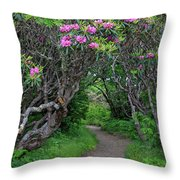 Nature's Tunnel Throw Pillow