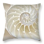 Nautilus 2by3 Throw Pillow