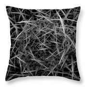 Needles Throw Pillow