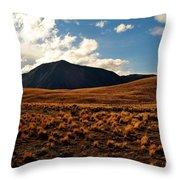 New Zealand Landscape Throw Pillow