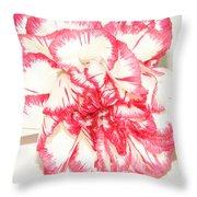 Nice Carnation Throw Pillow