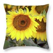 Nice Sunflowers Throw Pillow