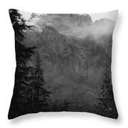 Noble Baring Throw Pillow