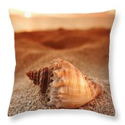 North Shore Seashell Throw Pillow