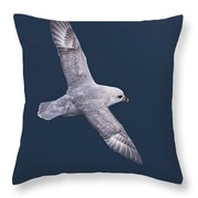 Northern Fulmar Throw Pillow