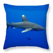 Oceanic Whitetip Shark Throw Pillow