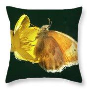 Ochre Ringlet Butterfly Throw Pillow