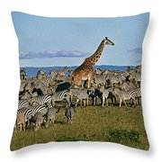 Odd Man Out Throw Pillow