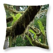 Office Art Forest Ferns Green Fern Giclee Prints Baslee Troutman Throw Pillow