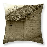 Old Adobe Building Throw Pillow