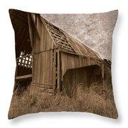 #210 Old Barn Throw Pillow