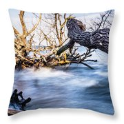 Old Dead Trees On Shores Of Edisto Beach Coast Near Botany Bay P Throw Pillow