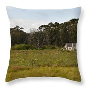 old Farm house Throw Pillow