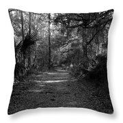 Old Florida Throw Pillow
