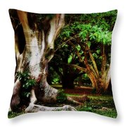 Old Freinds Throw Pillow