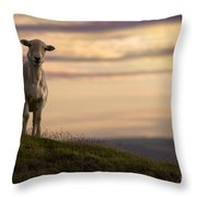 On The Top Of The World Throw Pillow