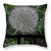 One Dandy Lion 3 Throw Pillow