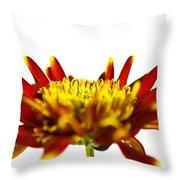 One Flower Throw Pillow