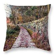 One To Follow Throw Pillow