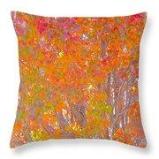 Orange And Red Autumn Throw Pillow
