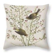 Orange Crowned Warbler Throw Pillow