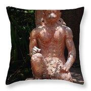 Orange Monkey Throw Pillow