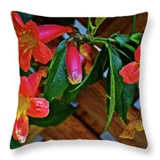 Orange Trumpet Vine At Pilgrim Place In Claremont-california   Throw Pillow