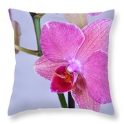 Orchards Throw Pillow