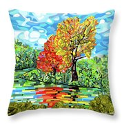 Reflection In The Wash  Throw Pillow
