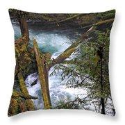 Oregon Stream Throw Pillow
