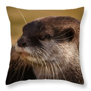 Oriental-small-clawed-otter Throw Pillow