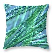 Oscillatoria Throw Pillow