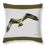 Osprey Looking For Lunch Throw Pillow