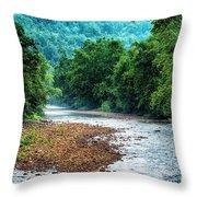 Osprey Over Elk River Throw Pillow
