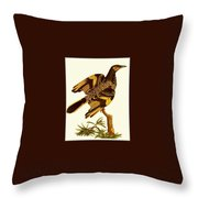 pa FB JamesSowerby RegentHoneyeater Penny Olsen Throw Pillow