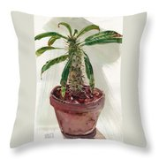 Pachypodium Throw Pillow
