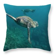 Pacific Green Sea Turtle Chelonia Mydas Throw Pillow