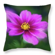 Painted Daisy Throw Pillow by June Marie Sobrito