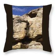 Painted Rock Throw Pillow